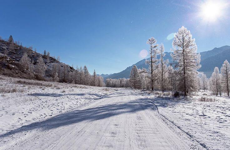 Winter Travel On Mountain Road Photograph by Oksana Ariskina  #OksanaAriskina #OksanaAriskinaFineArtPhotography #FineArtPhotography #HomeDecor #FineArtPrint #Pillow #PrintsForSale #Altai #Mountain #Winter #Sunshine