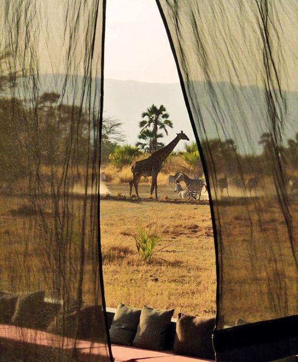 Tanzanie, lune de miel, voyages de noces