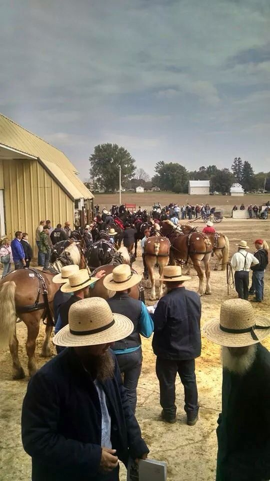 Waverly Iowa-The annual Waverly Horse Sales draws 15,000-20,000 people each year (more than the town's population). More than just draft horses are sold, and people from all over the country attend.