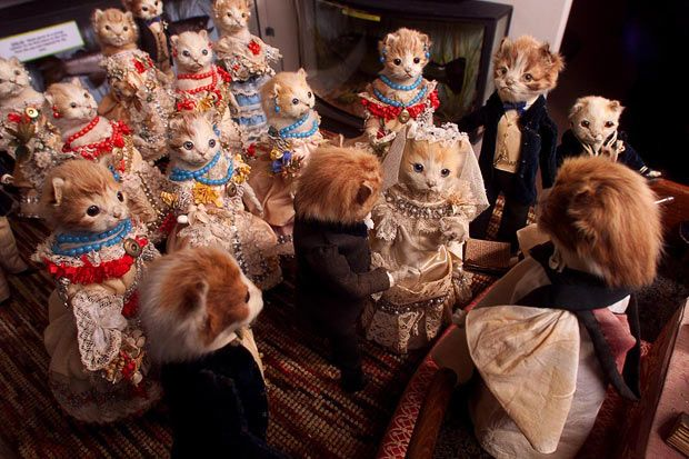 A bizarre collection of stuffed animals that was broken up and sold around the world seven years ago has been reassembled for a one-off exhibition. The eccentric works of Victorian taxidermist Walter Potter, in which stuffed animals mimic human life, were sold for more than 500,000GBP in 2003. Celebrities including Harry Hill, photographer David Bailey and artist Peter Blake snapped up pieces from the 10,000-item collection in Mr Potter's eerie Museum of Curiosities  i