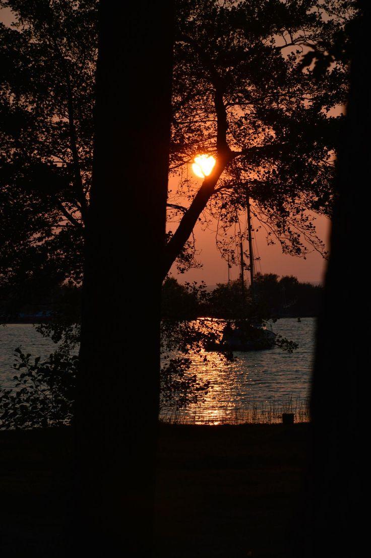 Sunset on the lake, Sanguinet, Landes, Pays de Born, (40). Photography.