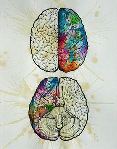watercolor brain                                                                                                                                                     More