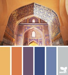 terracotta room with purple - Google Search
