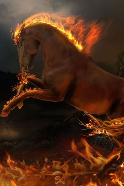 This is Wildfire, the well trained fire horse that Anna rides. But don't worry. Nothing melts my ice.