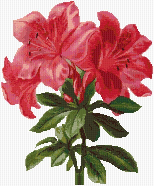 Cross Stitch   Red Lilies xstitch Chart   Design                              …
