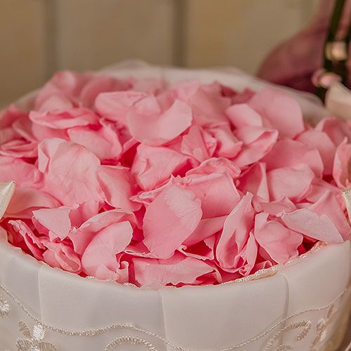 Beautiful real, freeze dried rose petals. Choose from pastel pink, white, purple. Available for purchase online at http://madelinesweddings.weddingstar.com/product/preserved-natural-rose-petals