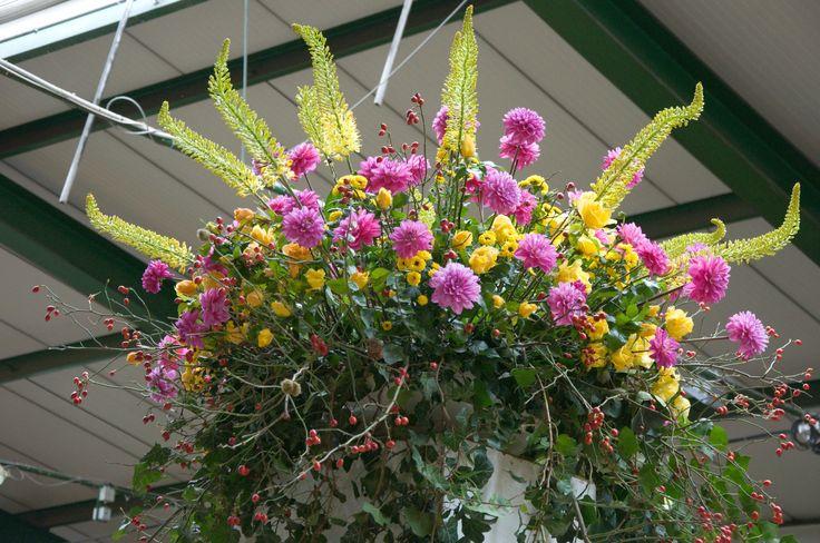 Tradiční podzimní výstava u STARKLa zahradníka je ideálním výletem pro celou rodinu. Kromě nevšedních květinových aranží a zahradních dekorací pro Vás bude připravena i speciální expozice těch nejúžasnějších růží.