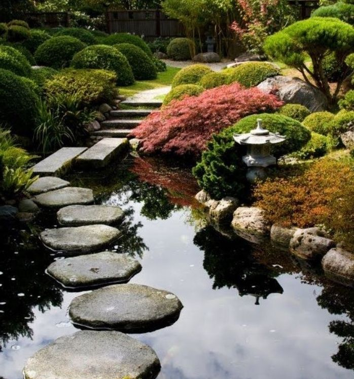 495 best jardinage images on pinterest home nature and for Arbuste pour jardin japonais