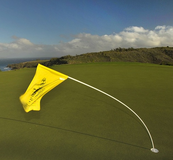PGA Tour Hyundai Tournament of Champions in Hawaii - Windy Day for Golf