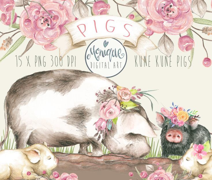 Pig Clipart,Pigs Watercolor,Cute Pigs,Kune Kune Pigs,hand painted,planner stickers, graphics resources,cliparts,planner pages,Nursery Prints by MoniqueDigitalArt on Etsy