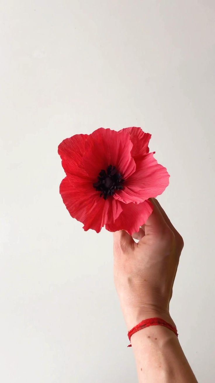 Amapola de papel en homenaje al diseñador #kenzo #amapola #poppy #paperflowertutorial #paperflowersdiy Wood Laser Ideas, Tissue Paper Flowers, Paper Flower Tutorial, Flower Template, Spring Crafts, Diy Gifts, Make Up, English, Photo And Video