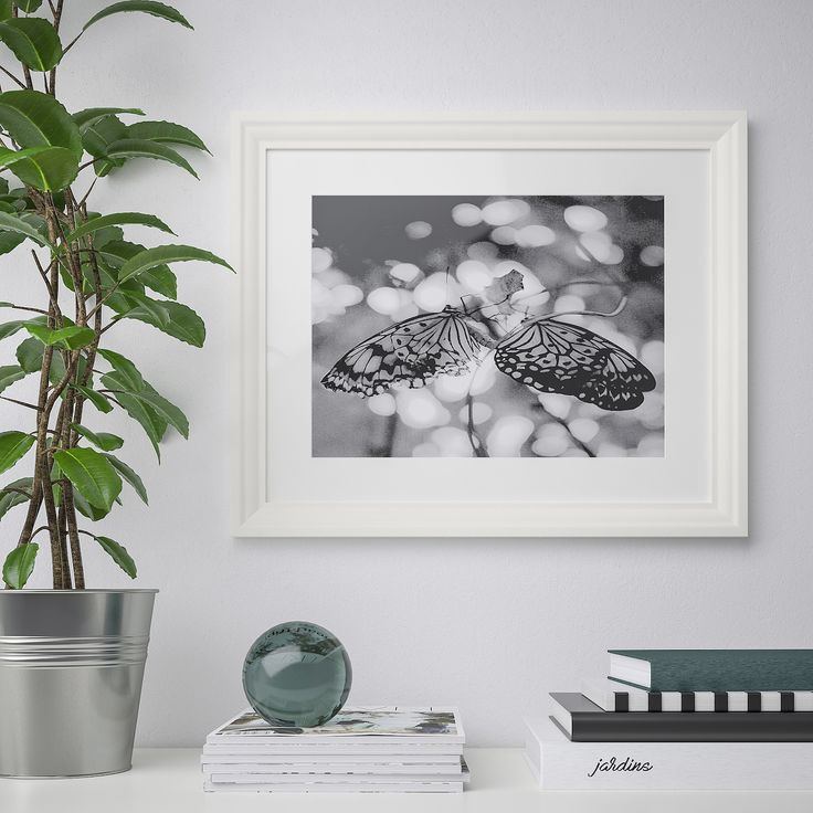Edsbruk Cadre Blanc 40x50 Cm Ikea Frame White Photo Frames Collage Picture Frames