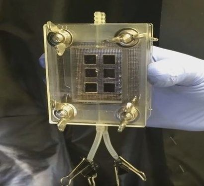 HyperSolar demonstrates hydrogen production directly from solar cells