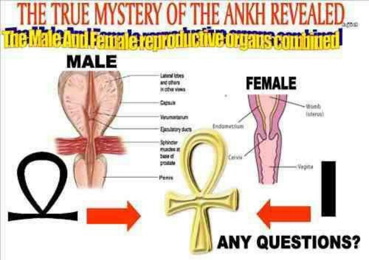 "The Meaning Behind The Ankh (aka; the crux aitsata, or the 'ansate' or 'handled cross') was sacred to the ancient Egyptians (this is actually the land of Ancient Kemet - ""the land of the blacks"" - which the Greeks later renamed Egypt) and is known as the original cross."