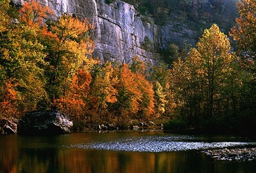 The Buffalo Wild and Scenic River is located in northwestern Arkansas. This segment of the river flows from its headwaters through the Upper Buffalo Wilderness to the boundary of the Ozark National Forest. From the National Forest boundary, 135 miles of the river, to its confluence with White River, was designated as the Buffalo National River in 1972 and is managed as a unit of the National Park Service.