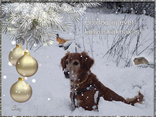 Boldog Új évet kívánok sok szeretettel