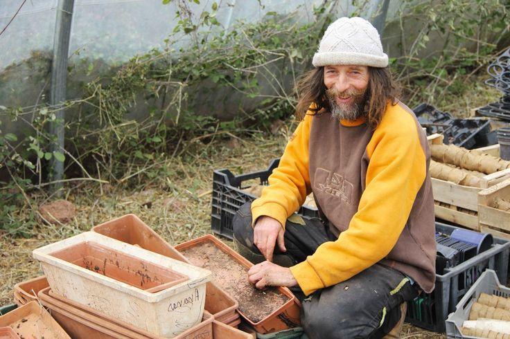 Tomates sans eau ni pesticide : cette méthode fascine les biologistes - Rue89 - L'Obs