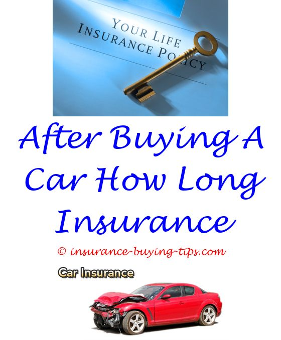 how to buy health insurance for family - geuco didbt buy collision insurance.which insurance to buy when renting a car who buys health insurance and why how to buy insurance with driver permit 4009045177