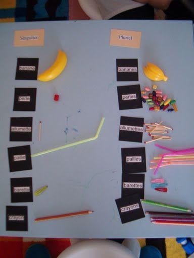 grammaire montessori - pluriel / singulier