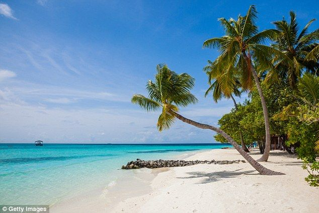 Tigerair and Scoot are offering flights to the idyllic south Asian location of the Maldive...