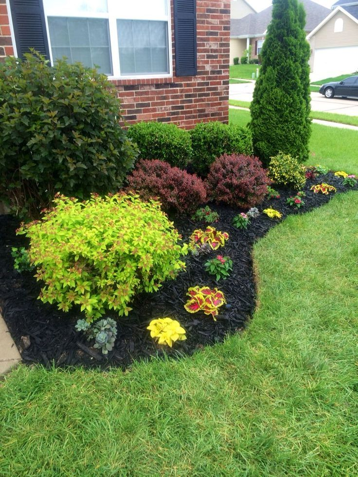 Beautiful Flowerbed Black Mulch Made A Big Difference Landscaping Ideas Home Landscaping Front Yard Landscaping Design Farmhouse Landscaping