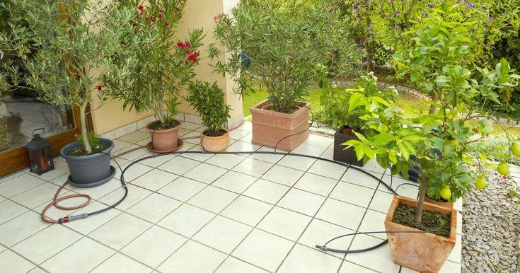 Bewässerungssysteme sparen nicht nur Zeit, sondern auchWasser. Mit einem Bewässerungscomputer ausgestattetversorgen sie Ihre Blumenkästen und Topfpflanzen auch zur Urlaubszeit zuverlässig. Hier zeigen wir Ihnen, wie Sie solch ein System richtig installieren.