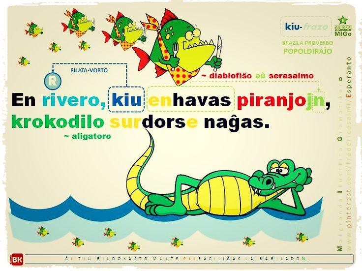 """MIGo, nova bildokarto (ĉi tio bildo ne estas la fina kaj ĝusta versio) pri """"KIU-frazo"""" + AKUZATIVO, per alia brazila popoldiraĵo:   """"En rivero, kiu enhavas piranjojn, krokodilo surdorse naĝas.""""   #migo #esperanto #akuzativo #brazila #popoldiraĵo #krokodilo #piranjo #rilatavorto #korelativo #kiu #bildokarto https://www.pinterest.com/fredericosalmi/migo-esperanto/"""