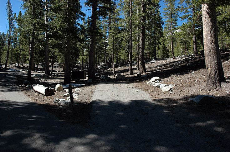 Coldwater mammoth lakes camping campsite