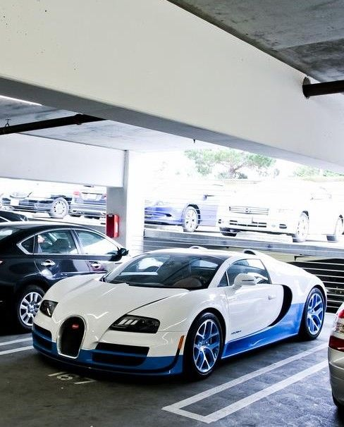 341 Best Images About Bugatti Veyron On Pinterest: 882 Best Bugatti Images On Pinterest