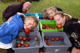 Image result for images of apple bobbing