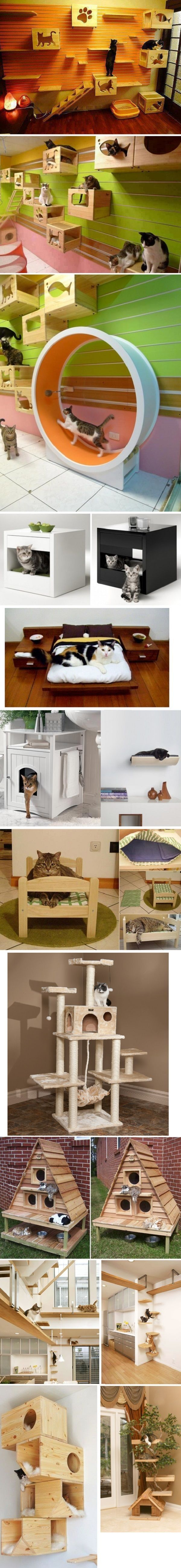 15 Awesome Cat Playhouses | WoodworkerZ.com