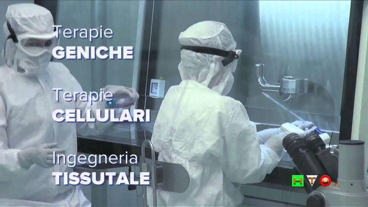 La Notte Europea dei Ricercatori all'Ospedale Pediatrico Bambino Gesù - ...