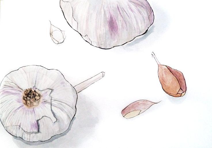 Madalena Ventura. Aguarela e tinta-da-china s/ papel, 29,7 x 42 cm