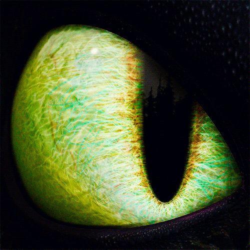 Wow. Toothless. Eye.