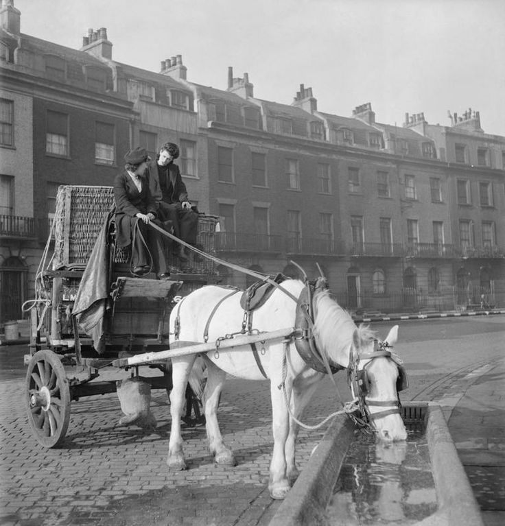 "London, 1943: A horse-drawn delivery van of the London, Midland and Scottish railway. After collecting another load from the depot, Lilian Carpenter (left) and Vera Perkins pause in a Square in Bloomsbury to allow ""Snowball"" the horse to drink from a trough."