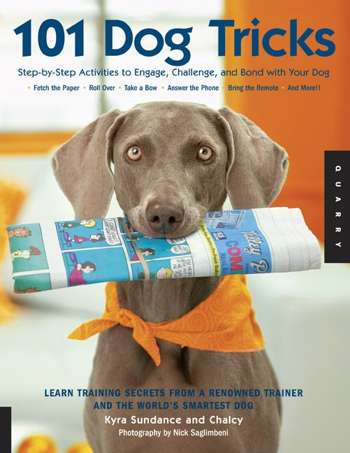 Cool book with many dog tricks and a step by step guide to teach your dogs cool tricks.