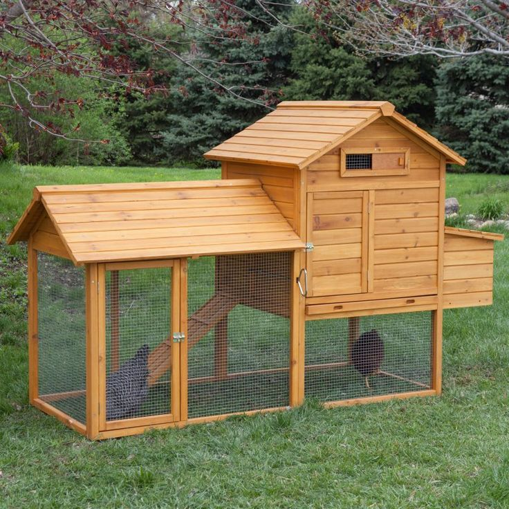 Boomer & George Tree-Tops 4 Chicken Coop With Run - WIT237