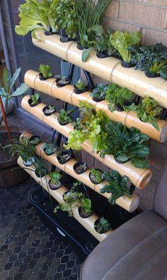 VGS Bamboo 30 - Bamboo Vertical Gardens and Balcony Wall Gardens