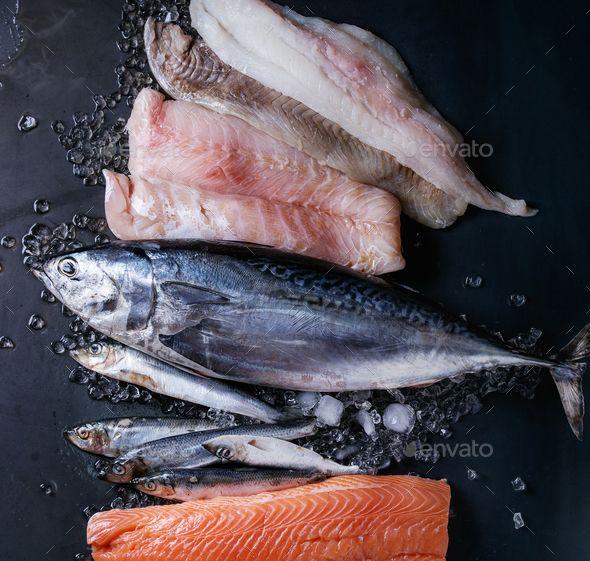 Vatiery Of Raw Fresh Fish Fresh Fish Fish Salmon Fish
