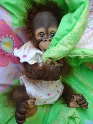 reborn monkey on ebay