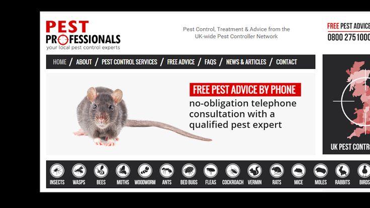 We cover all domestic and business pest control work on