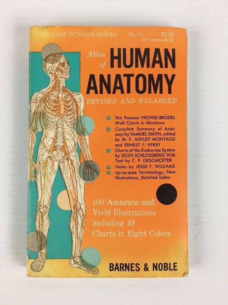 The 25 best atlas anatomy ideas on pinterest skeleton medical atlas of human anatomy book 1965 vintage revised and enlarged fandeluxe Gallery