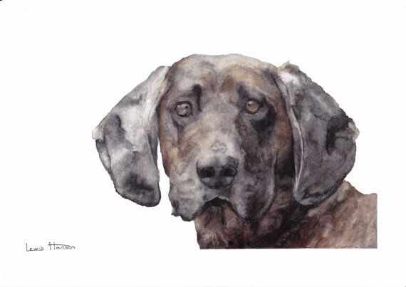 This is a print of my original painting of a Bavarian Hound.   It is printed on a thick high quality 350g silk paper that has a matte finish.  This…