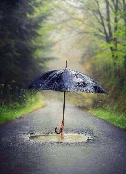 #photography #umbrellas #rain
