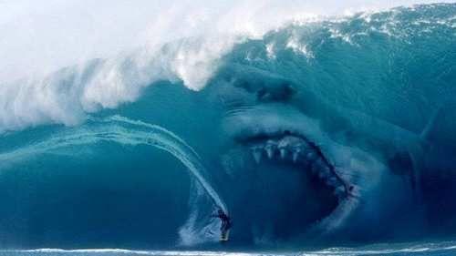Spettacoli: #Meg: #rimandato #all'estate 2018 il film sul grande squalo bianco (link: http://ift.tt/2lObfex )