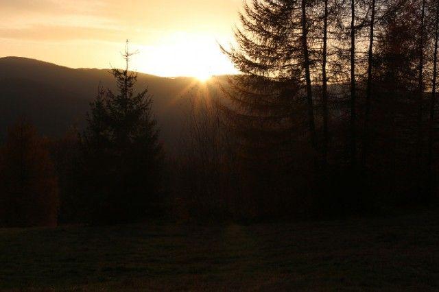Widok z polany w Wołosatem, tuż po zejściu ze szlaku prowadzącego na Tarnicę.