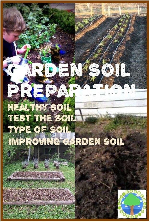 How To Prepare Soil For Gardening In 2020 Soil Garden Soil