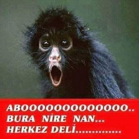 Takip edin..... @mutluluk_cok_yakindaa @mutluluk_cok_yakindaa  #turkiye #allah #islam #mevlana #love #ask #istanbul #malatya #izmir #bursa #ankara #ask #sevgi #dua #kul #sahur #iftar #adana #zengin #fakir #dirilis #rize #samsun #ordu #gaziantep #olum #cehennem #komik #sivas #mizah #komedi
