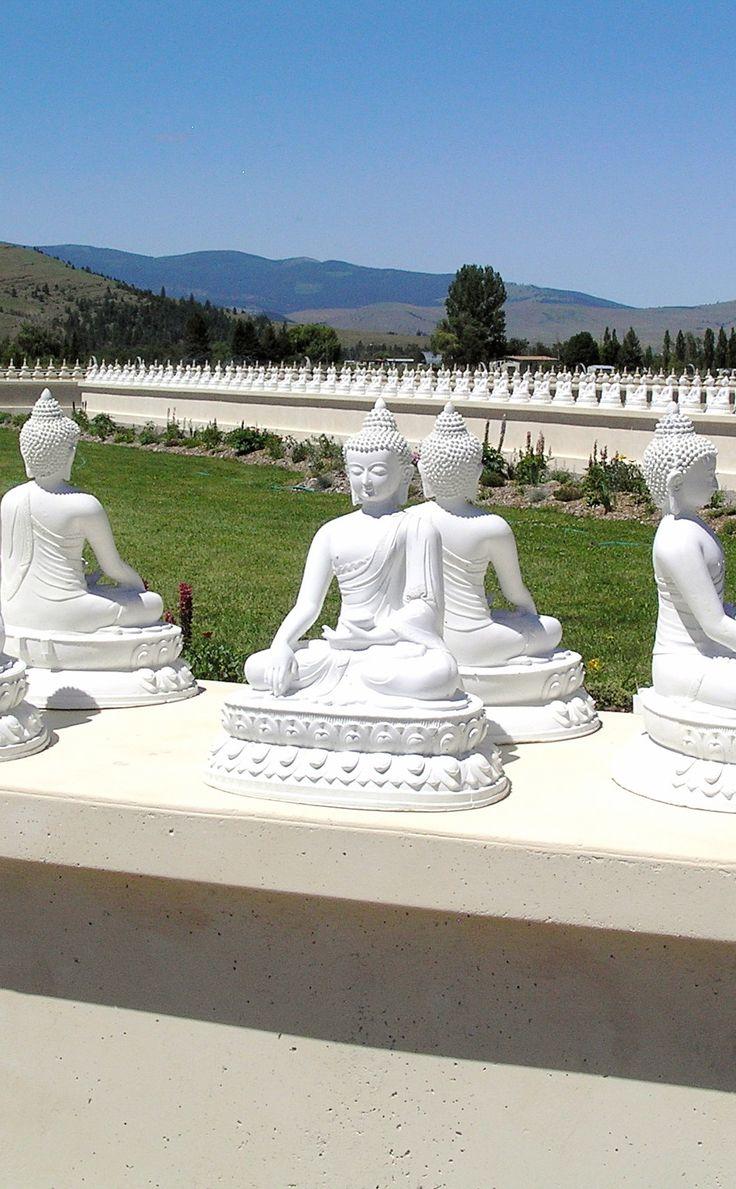 7 Best Lumbini The Birth Place Of Buddha Images On Pinterest Birth Births And Buddha