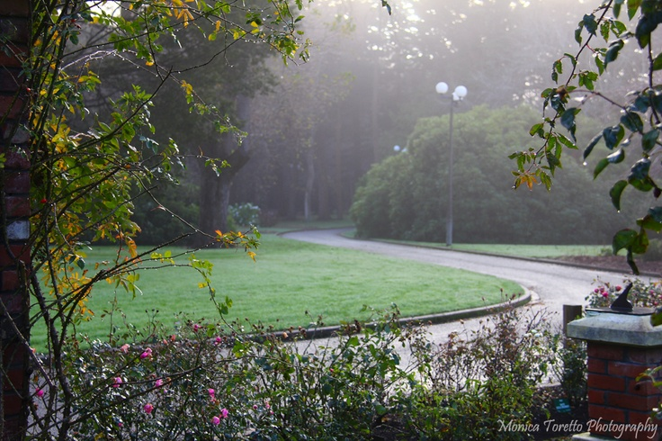 The sun is trying to break through the fog early one June morning in Invercargill. 2013.